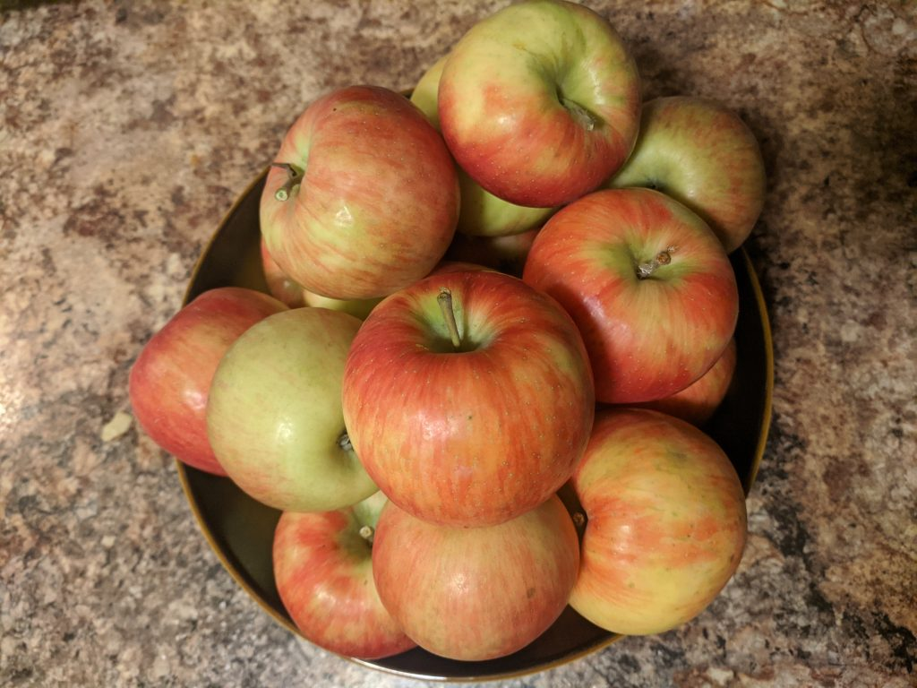 Apples from Montgomery Orchard (Honey Crisp)